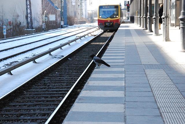 Emprunter les différents moyens de transport en anglais (means of transportation)